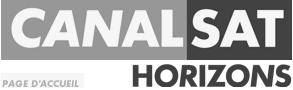 100,000 абонентов CanalSat Horizons