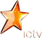 FIFA 2010 НА ICTV