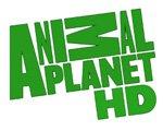 Animal Planet HD начинает вещание в пакете НТВ-Плюс.