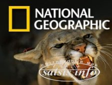 Sanoma Media Ukraine запустит National Geographic в 2013 году?