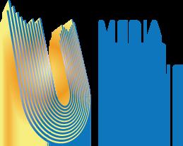 Каналы холдинга «Медиа Группа Украина» - эксклюзивные трансляторы ЕВРО-2016