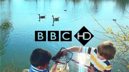 Корпорация BBC запустила пять новых HD-каналов