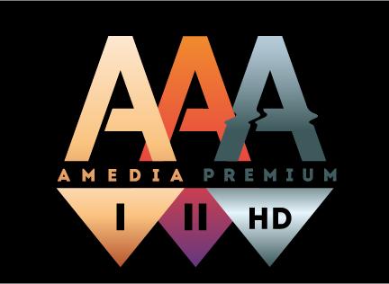 Amedia TV с новым главой