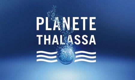 Koнец канала Planete+ Thalassa