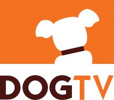 DogTV приходит в Польшу