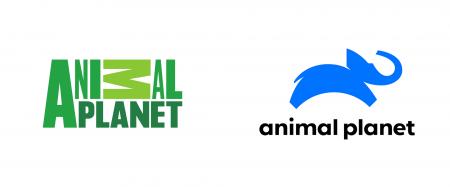 Российская версия Animal Planet сменила логотип и миссию