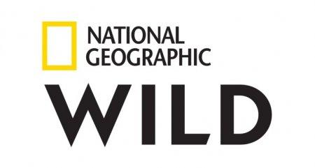Nat Geo Wild сменит название и логотип