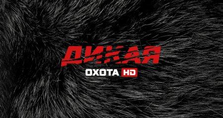 Мининформ Беларуси выдал разрешение на вещание в платных сетях 4 каналам