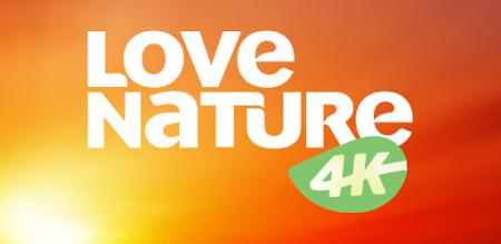 Love Nature 4K дебютирует на платформе Okko