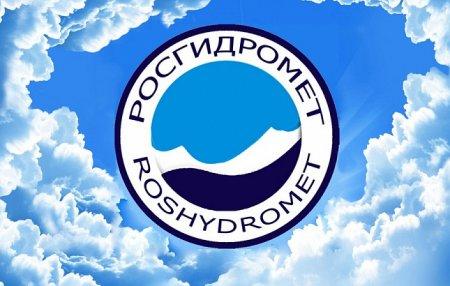 Глава Гидрометцентра считает, что России надо развивать группировку спутников